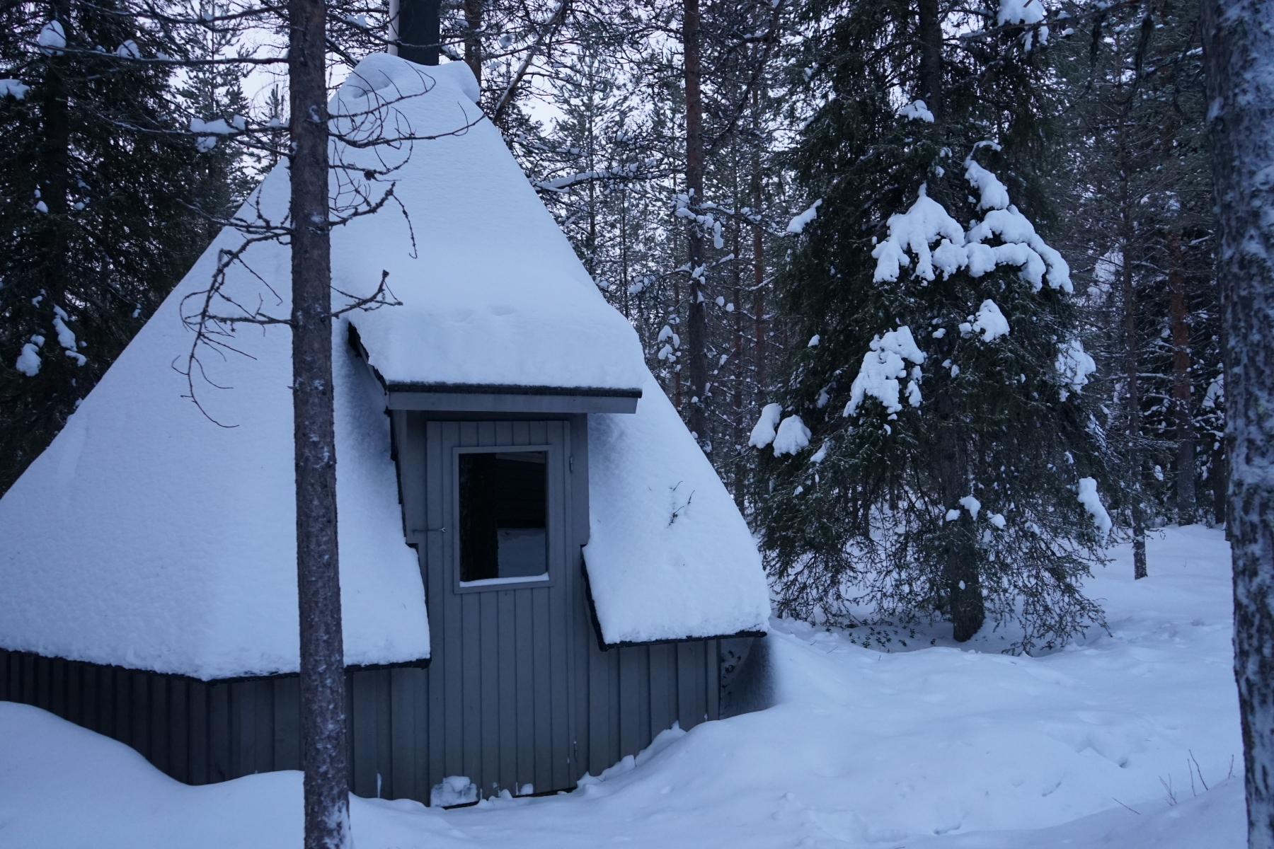 kota winter